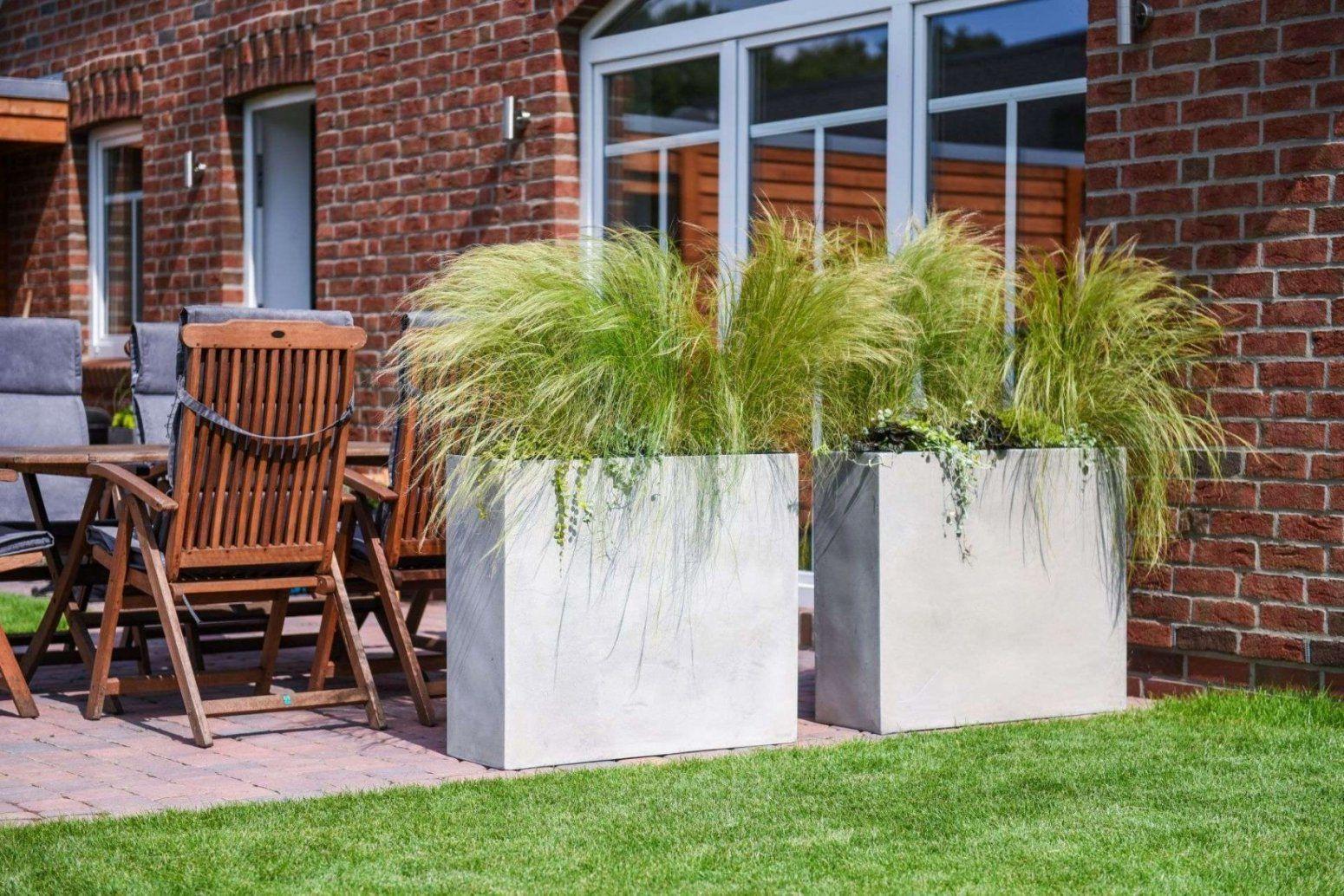60 Awesome Pflanzen Sichtschutz Terrasse Kubel  Wccp von Pflanzen Als Sichtschutz Terrasse Bild