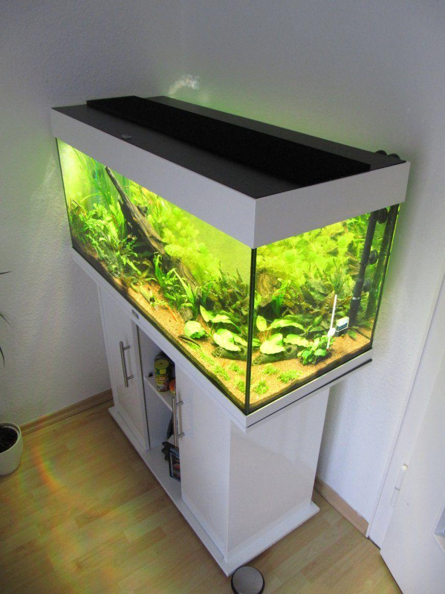 Aquarium Led Beleuchtung Selber Bauen  Schullebernd's Technikwelt von Bild Mit Beleuchtung Selber Machen Photo