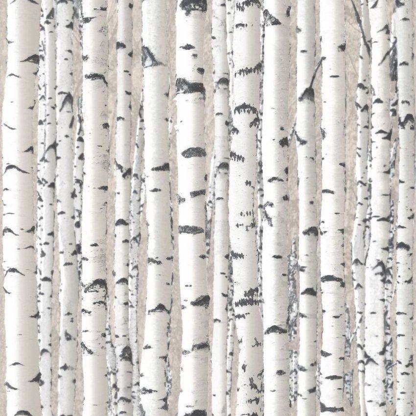 Baum Zweige Tapete  Grau & Weiß  1279 Debona Neu Silberne Birke von Tapete Birke Schwarz Weiß Photo