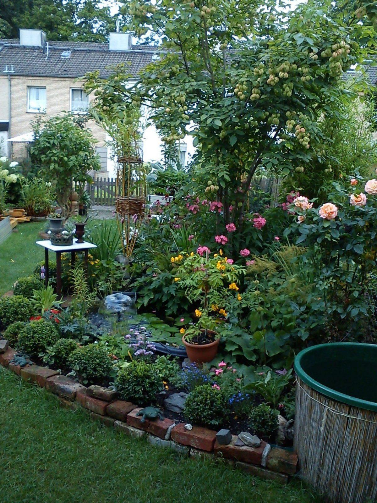 Beet Im Sommer  Mein Kleiner Reihenhausgarten  Pinterest von Kleiner Zaun Für Vorgarten Bild