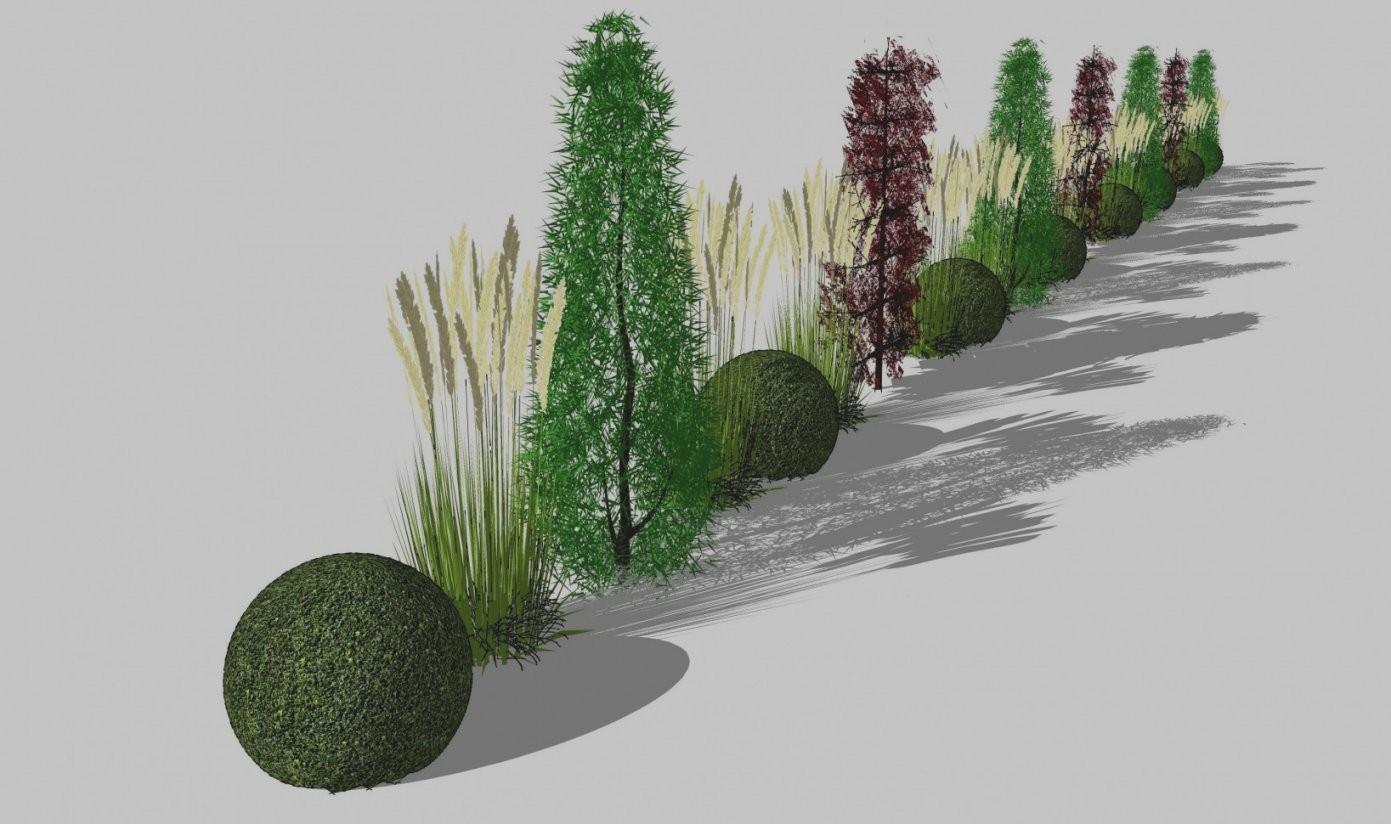 Beste Moderne Gartengestaltung Mit Grsern 43 Moderner Garten Gräsern von Moderne Gartengestaltung Mit Gräsern Photo