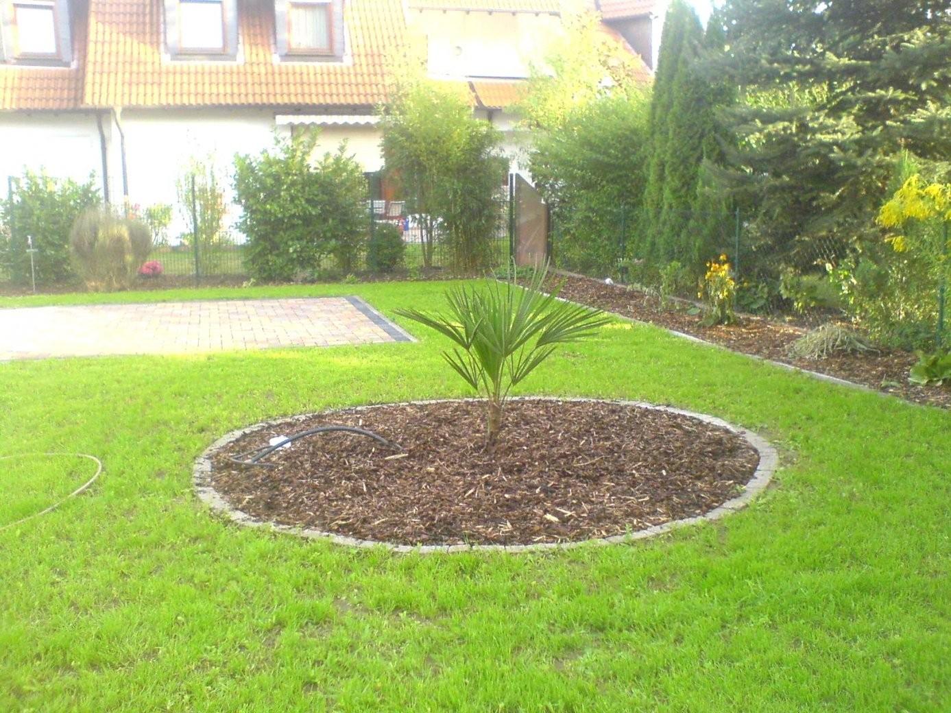 Blumen Garten Neu Anlegen Elegant Garten Neu Anlegen Plan Von von Vorgarten Gestalten Mit Kies Und Gräsern Photo