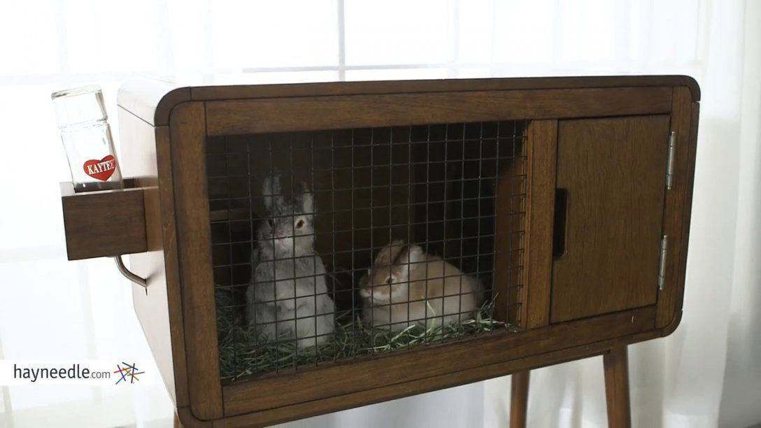Boomer & George Carter Indoor Rabbit Hutch  Product Review Video von Boomer And George Rabbit Hutch Photo