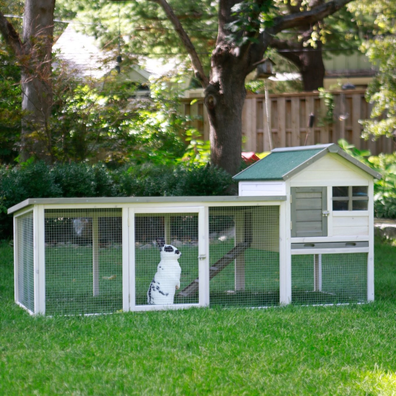 Boomer & George White Wash Outdoor Rabbit Hutch With Extended von Boomer And George Rabbit Hutch Bild
