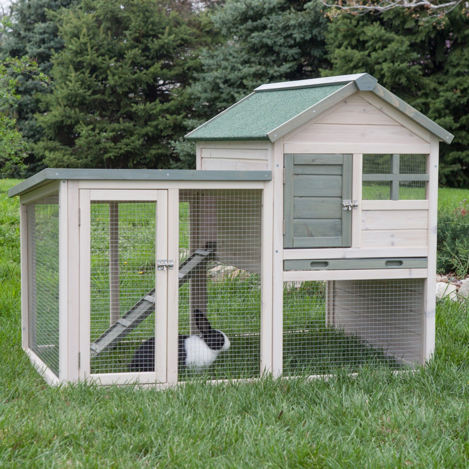 Boomer & George White Wash Rabbit Hutch  Hayneedle von Boomer And George Rabbit Hutch Bild