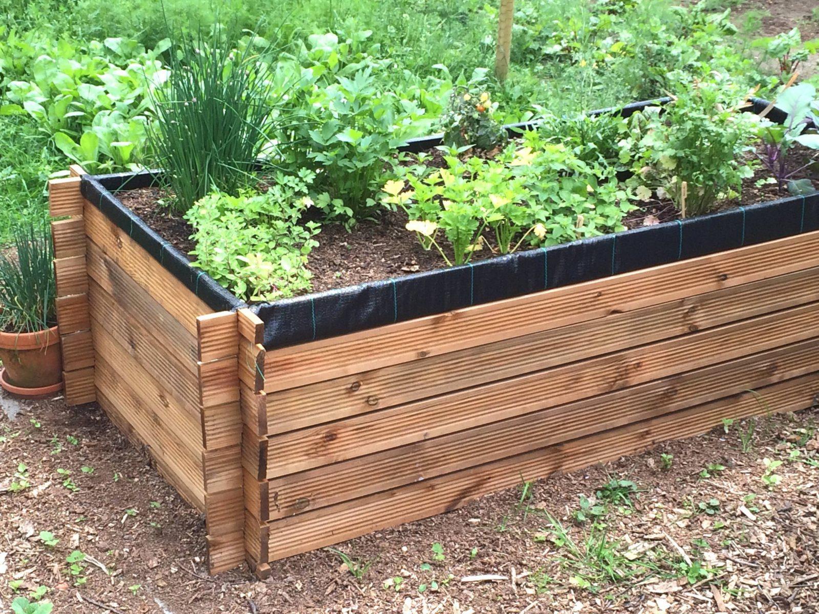 Das Beste Von 40 Tomatenhaus Selber Bauen Ideen Einzigartiger Garten