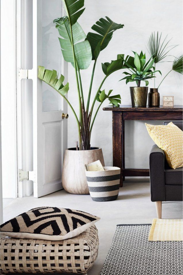 Deko Ideen Wohnzimmer Mit Dekoration Für Wohnzimmer Schöne Ideen Und von Deko Ideen Für Wohnzimmer Bild