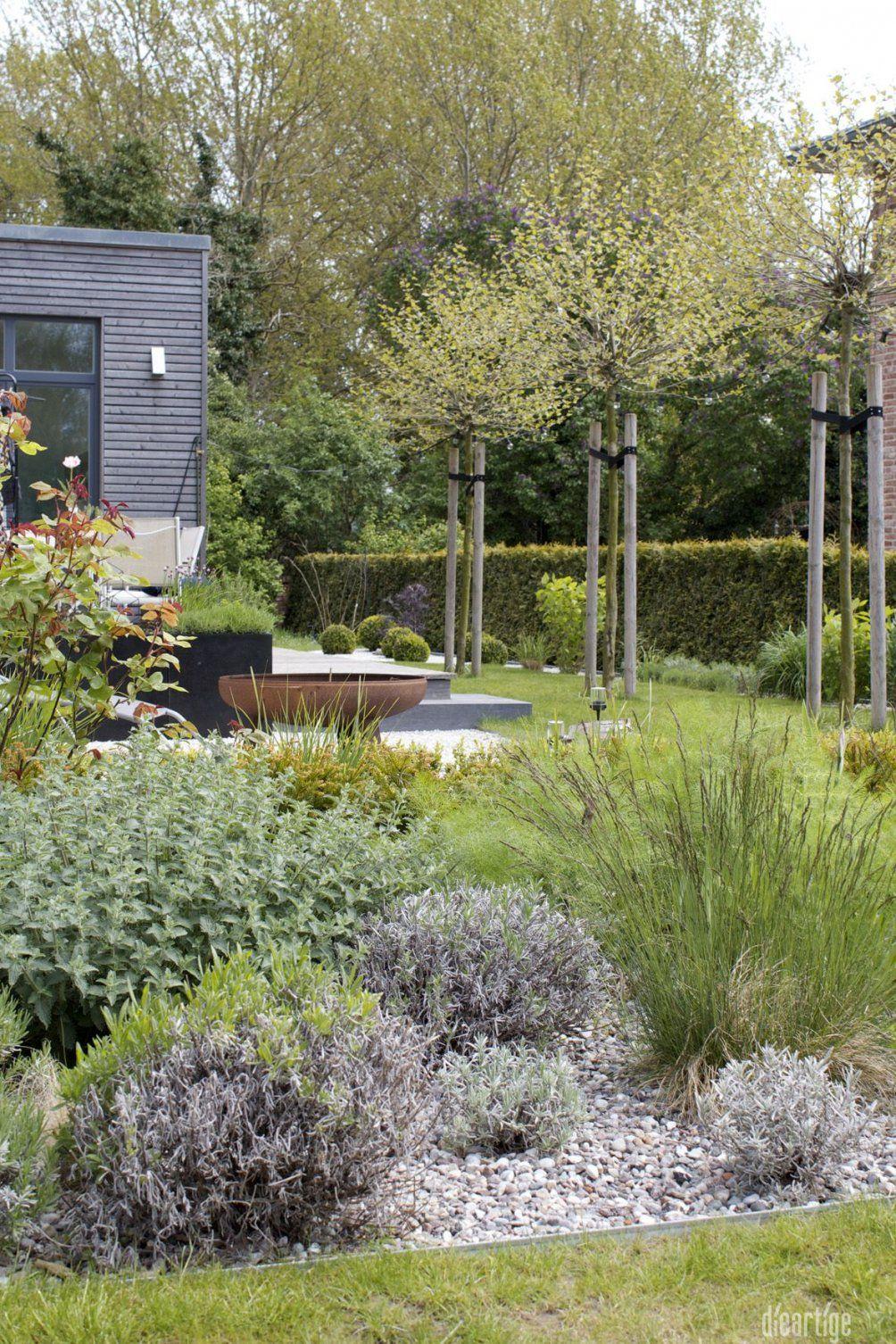 Dieartigeblog  Garten  Kiesbeet Mit Lavendel Katzenminze Rose von Gartengestaltung Mit Kies Und Gräsern Photo