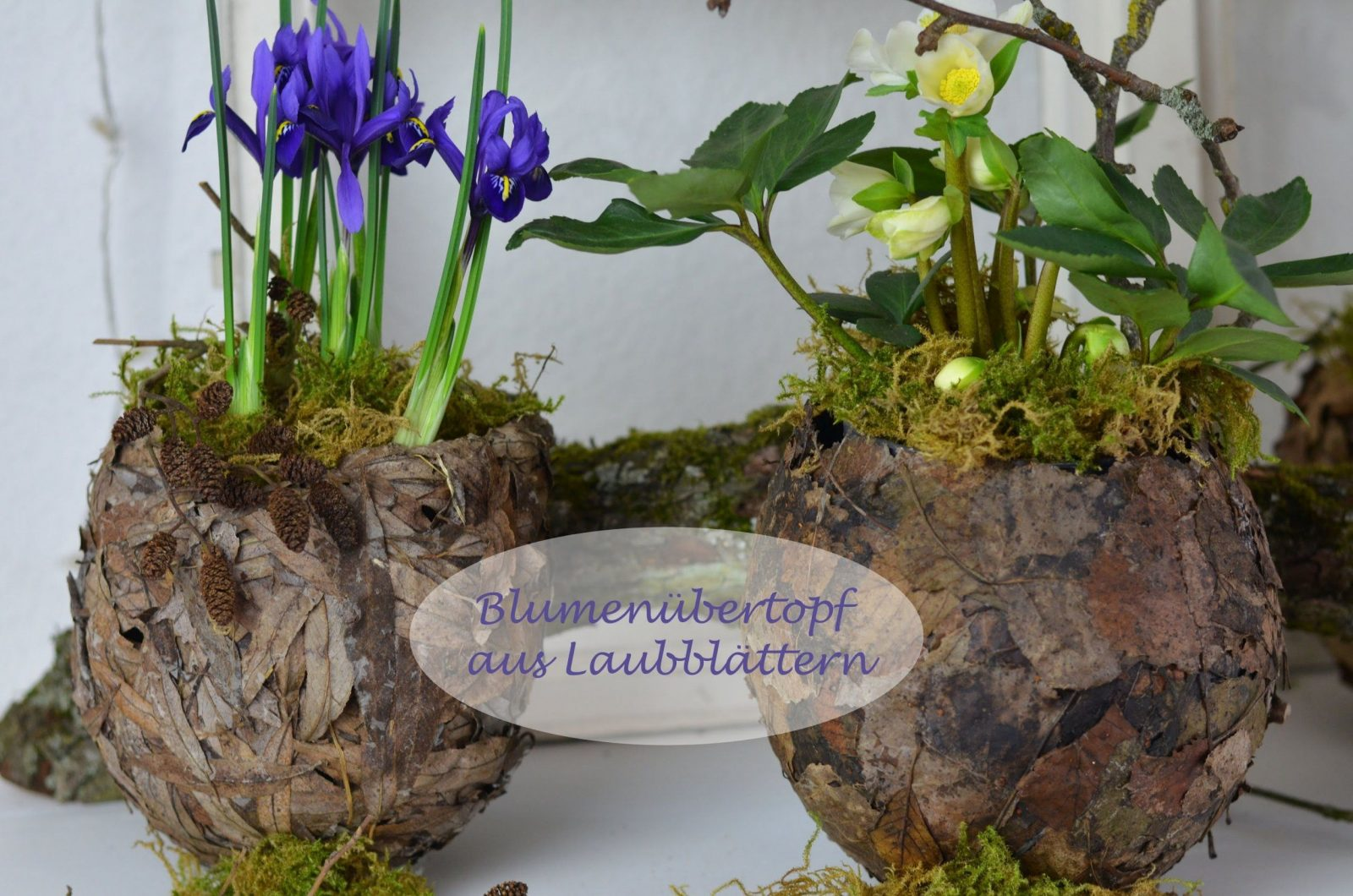 Diy  Frühlingsdeko Selber Machen  Übertopf Aus Laubblätter Für von Frühlingsdeko Basteln Mit Naturmaterialien Bild