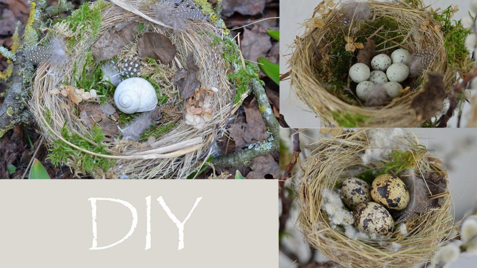 Diy  Frühlingsdeko Selber Machen  Vogelnest Aus Naturmaterial von Frühlingsdeko Basteln Mit Naturmaterialien Bild