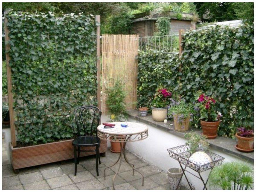 Elegant Sichtschutz Terrasse Pflanzen Bild Von Terrasse Idee 145409 von Pflanzen Als Sichtschutz Terrasse Bild