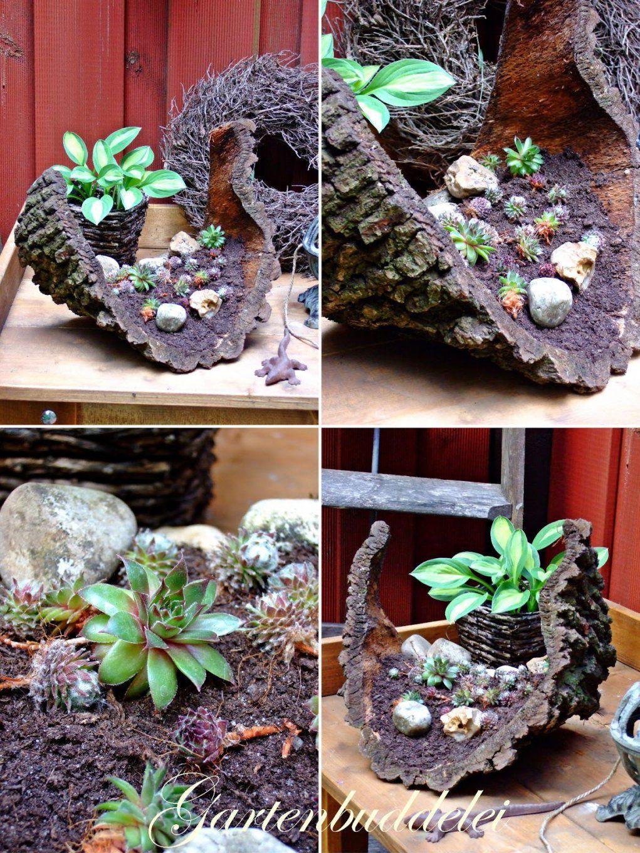 Gartenbuddelei Hauswurz von Deko Ideen Mit Hauswurz Photo