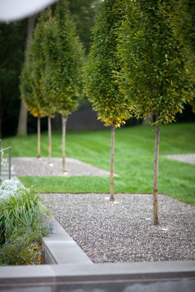 Gartengestaltung Mit Kies  Ideen Mit Naturstein Und Gräsern von Gartengestaltung Mit Kies Und Gräsern Photo