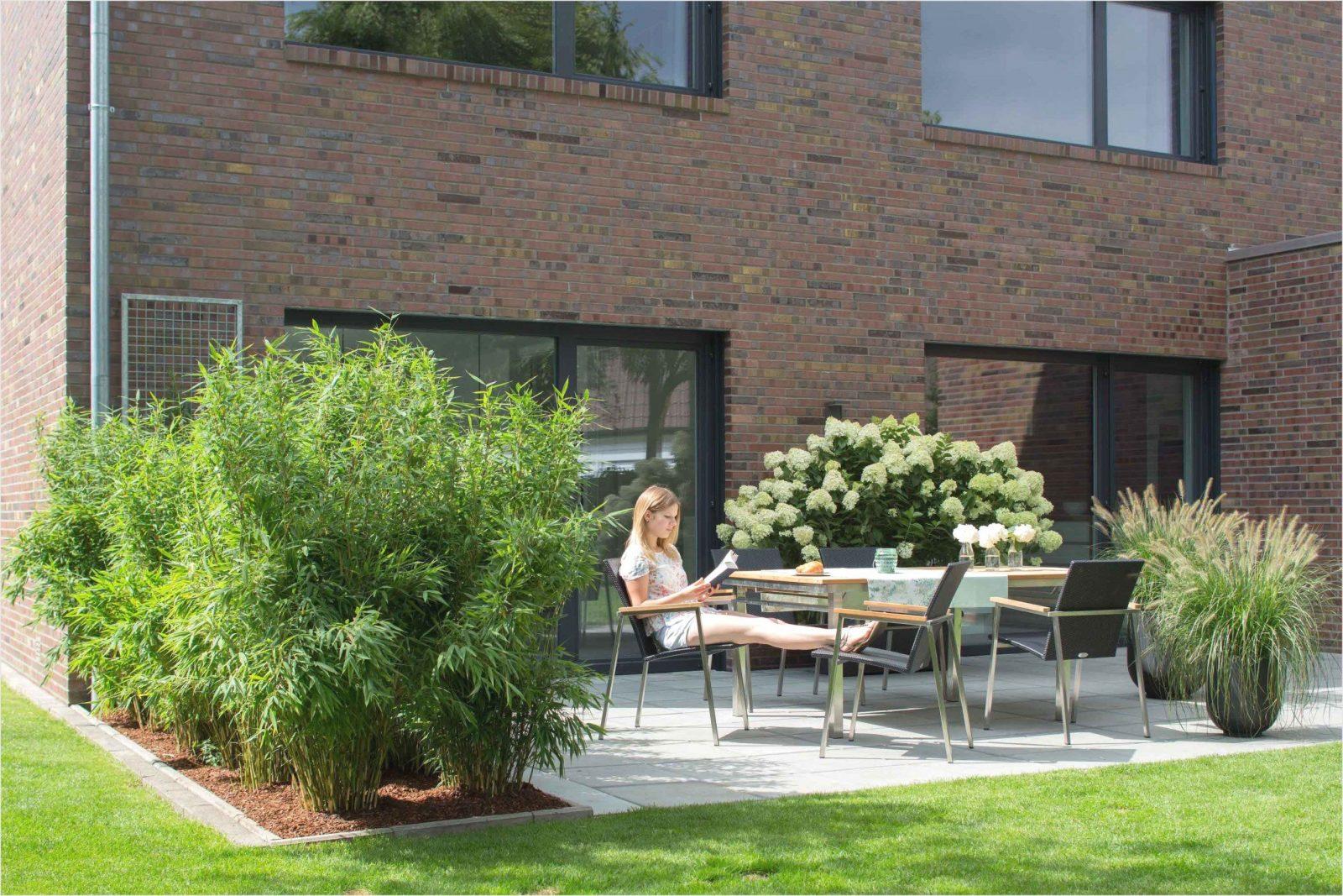 Inspiration Thuja Hecke Pflanzen Schema  Terrasse Designideen von Pflanzen Als Sichtschutz Terrasse Photo