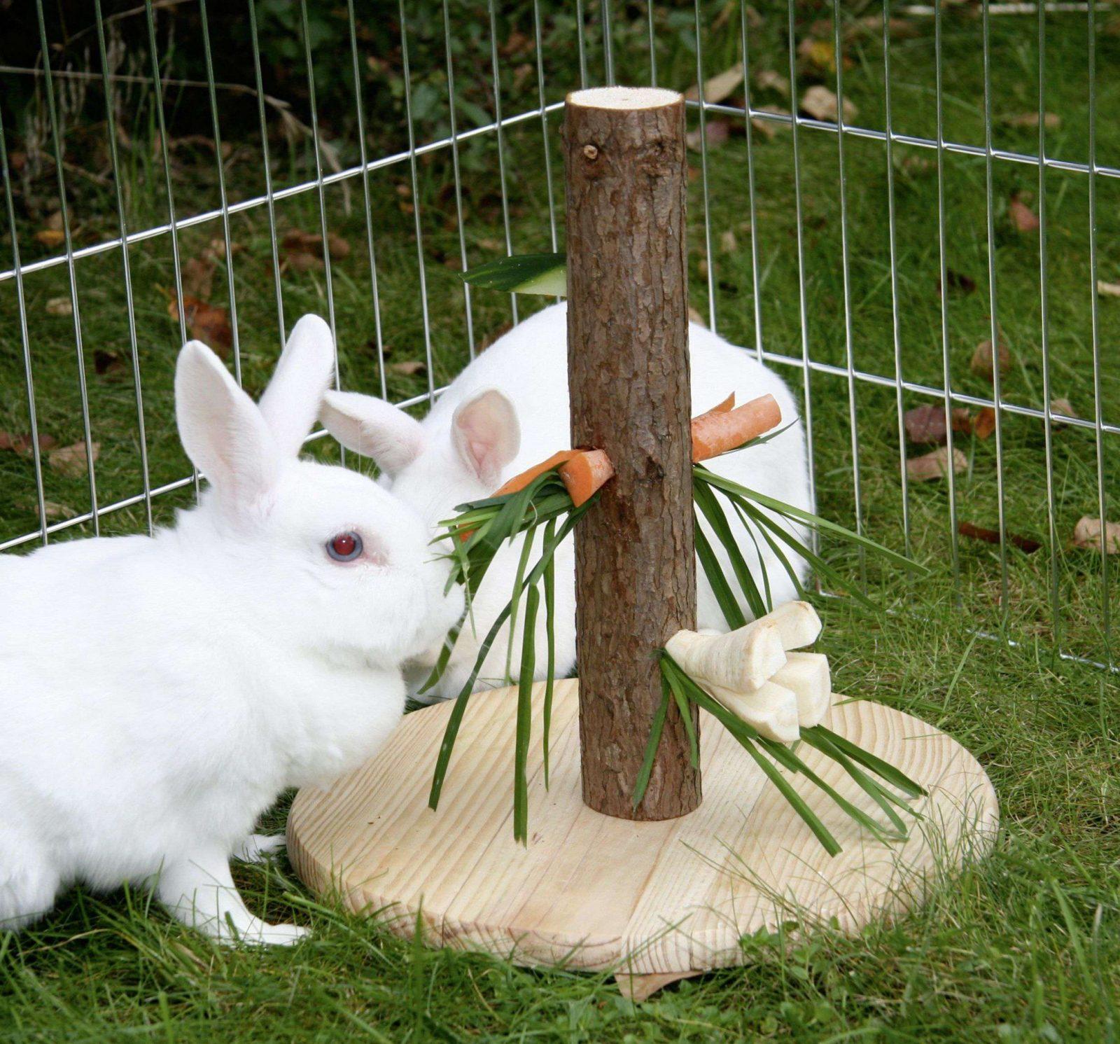 Kaninchen Spielzeug Selber Bauen  Swalif von Spielzeug Für Kaninchen Selber Machen Bild