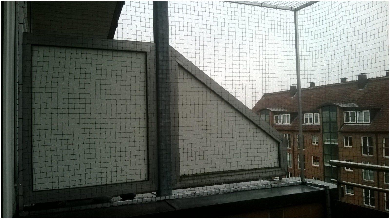 Katzennetz Fenster Ohne Bohren 188196 Der Katzennetz Profi Führt von Katzenschutznetz Balkon Ohne Bohren Photo