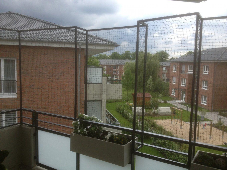 Katzennetz Nrw Die Adresse Für Ein Katzennetz Katzennetz Ohne von Katzenschutznetz Balkon Ohne Bohren Photo