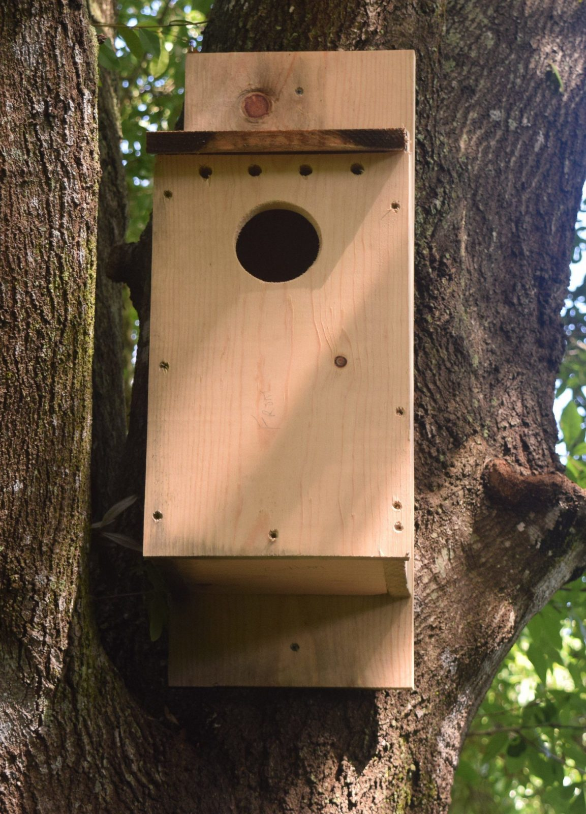 Owl Nest Box Building   Chikaming Open Lands von Screech Owl Box Placement Photo