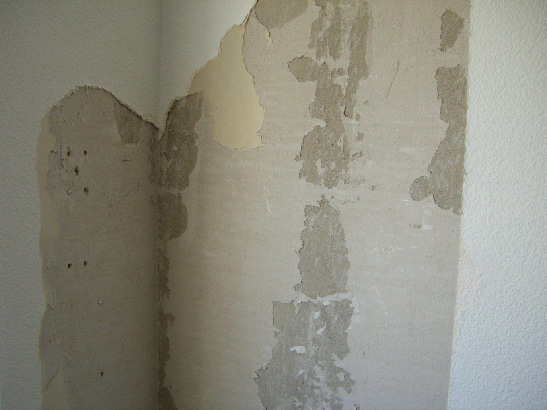 Putz Klebt An Tapete Statt An Wand  Hausgarten von Wand Ohne Tapete Streichen Photo
