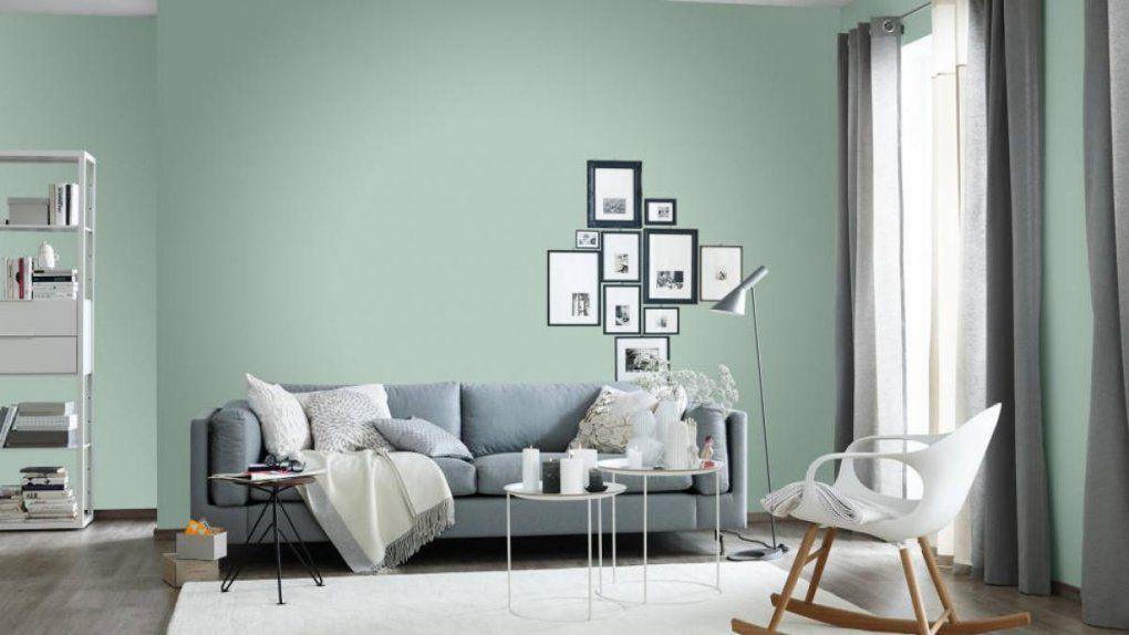 Schöner Wohnen Trendfarbe Tester Fresh Matt 50 Ml Kaufen