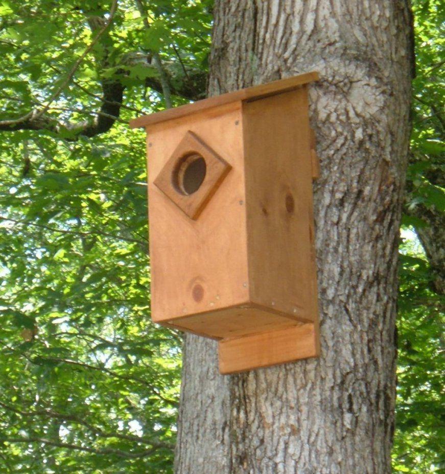 Screech Owl House Plans How To Build A Screech Owl Box  Feltmagnet von Screech Owl Box Placement Bild