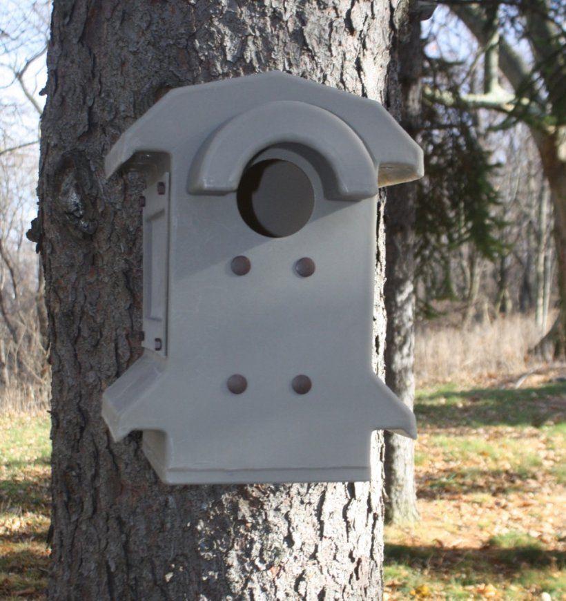 Screech Owl Nest Box – Barn Owl Box Company von Screech Owl Box Placement Photo