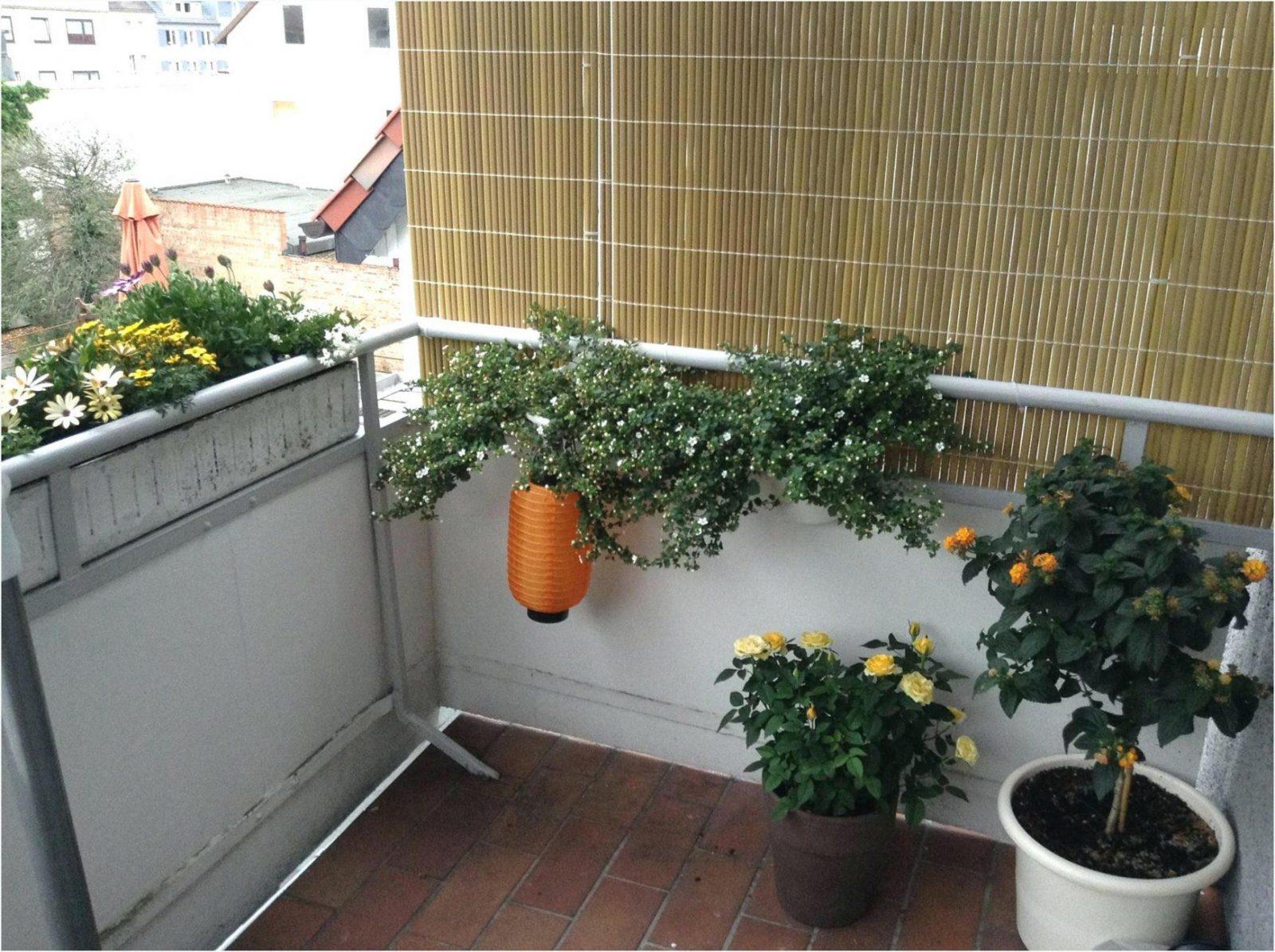 sichtschutz für balkon selber machen | haus design ideen
