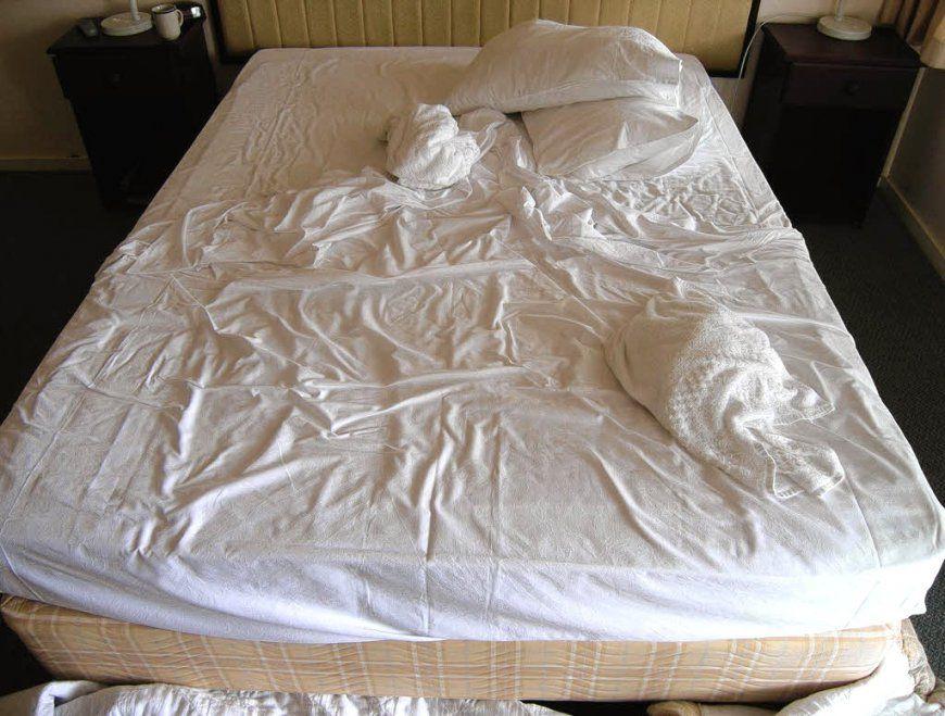 Unglaubliche Inspiration Silberfische Im Bett Und Attraktive von Mittel Gegen Silberfische Im Schlafzimmer Photo