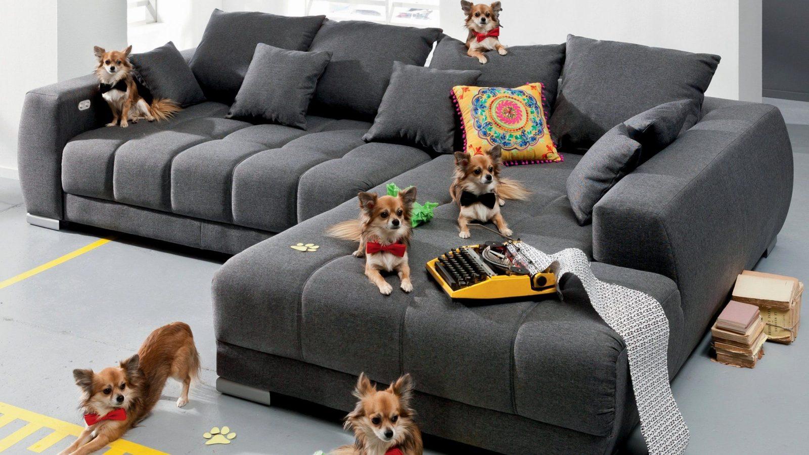 30 Sparkling Möbel As Angebote Images  Gamerbounty von Möbel As Bruchsal Angebote Bild