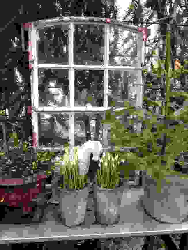 Alte Fenster Zur Dekoration Im Haus 50 Coole Ideen Pinterest von ...