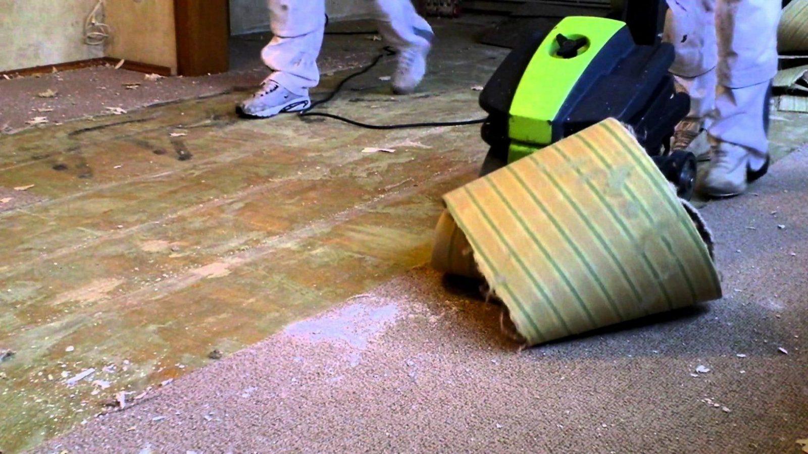 37 Modern Inspiration Oben Teppich Entfernen  Beste Sammlung Von von Katzenurin Aus Teppich Entfernen Bild