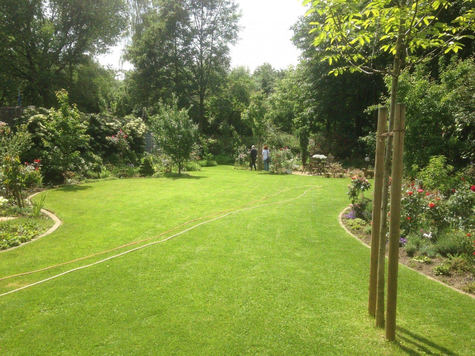 Alles Für Garten Schön Einzigartig 40 Garten Ohne Rasen Alternativen von Garten Ohne Rasen Alternativen Zum Rasen Photo