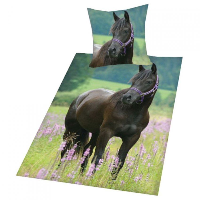 Animal Bedding 100% Cotton Duvet Covers  Funny Horses Puppies von Herding Bettwäsche Pferd Bild