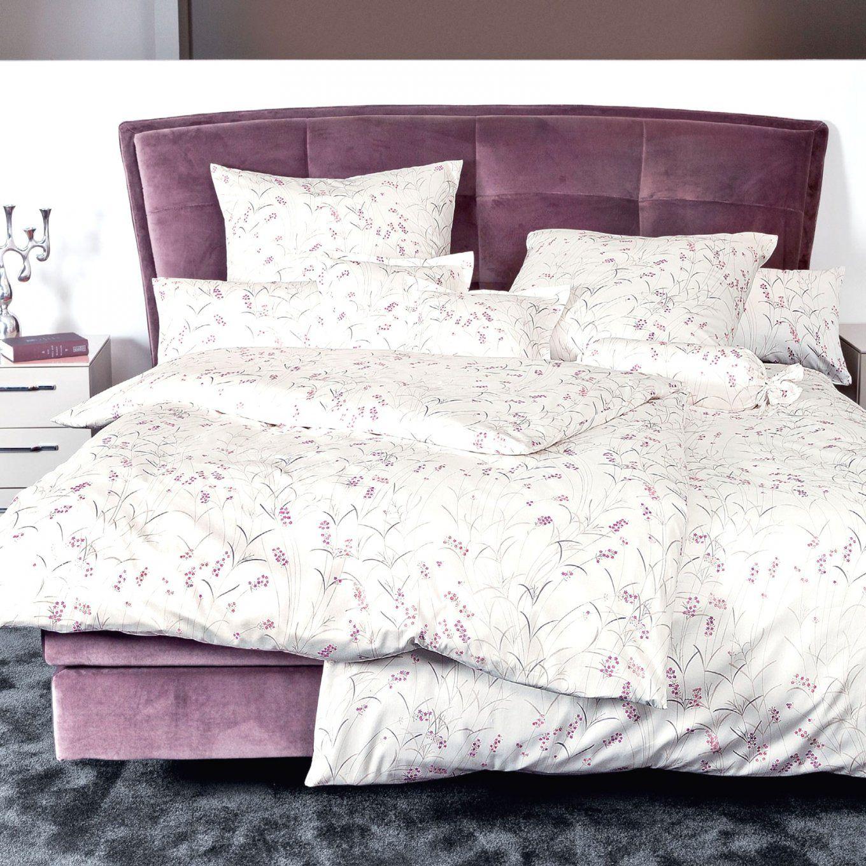 Atemberaubende Inspiration Bettwäsche Lavendel Und Schöne Janine von Bettwäsche Lavendel Motiv Bild