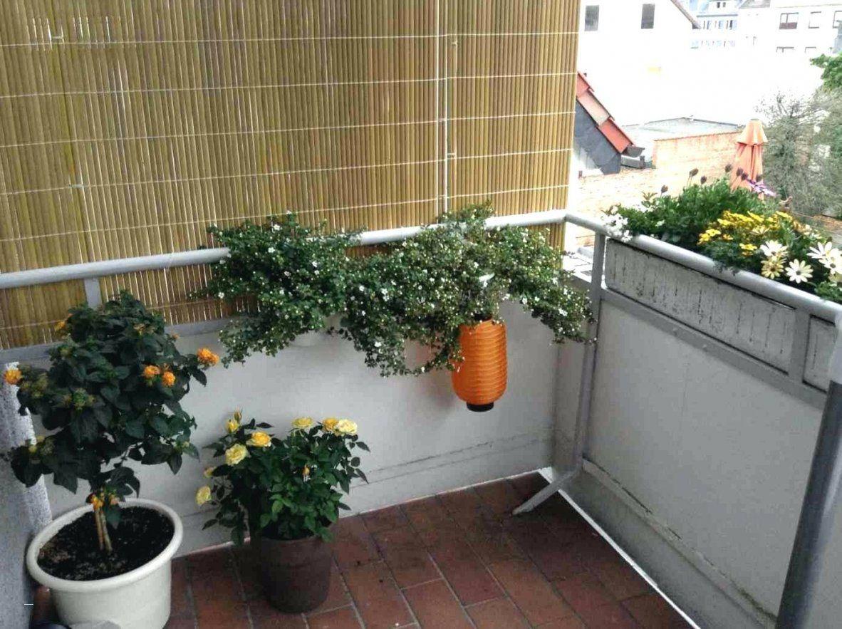 balkon gestalten mit wenig geld haus design ideen. Black Bedroom Furniture Sets. Home Design Ideas