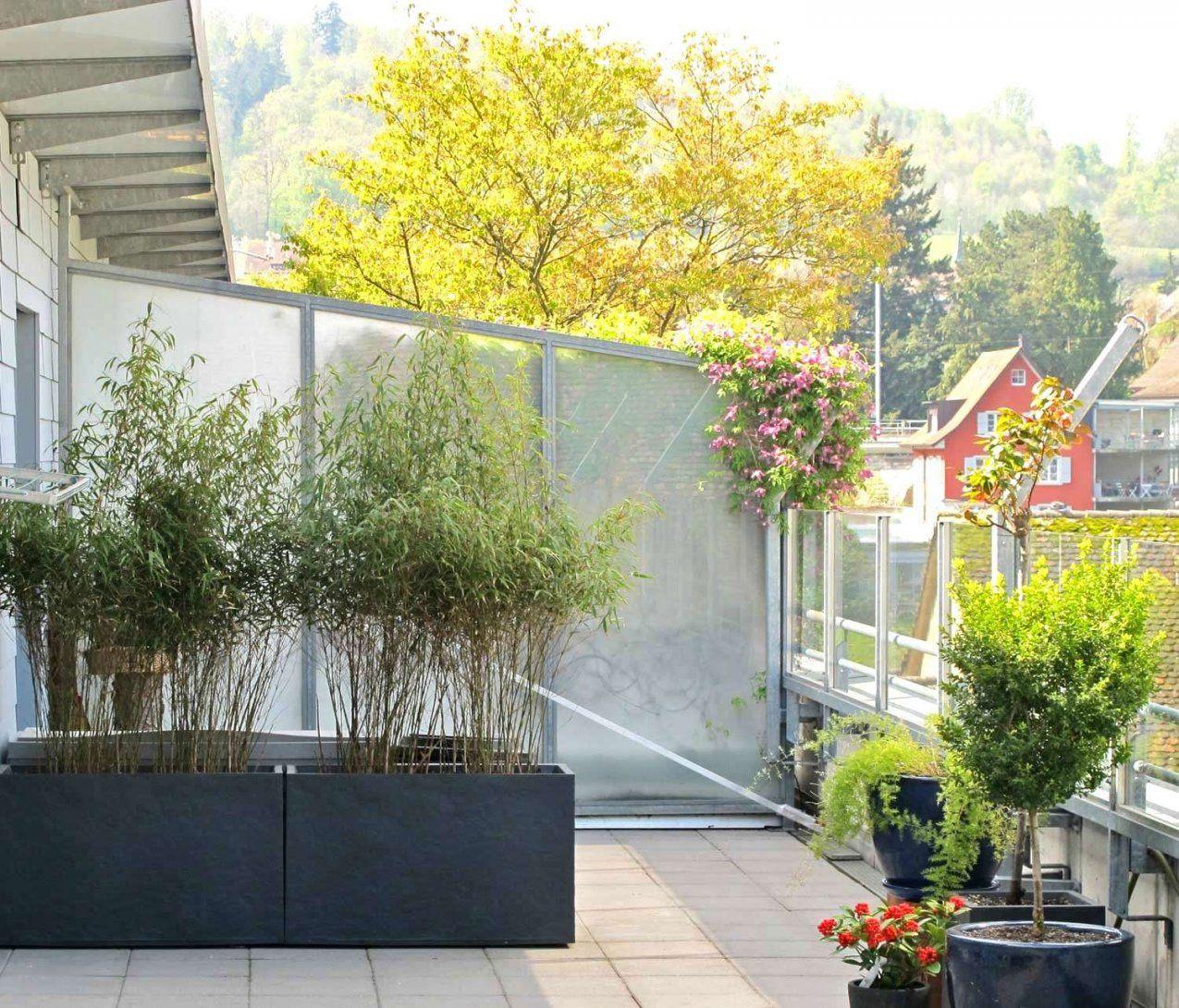Bambus Windschutz 35 Neueste Balkon Sichtschutz Bambus Ikea Schema von Balkon Sichtschutz Bambus Ikea Photo