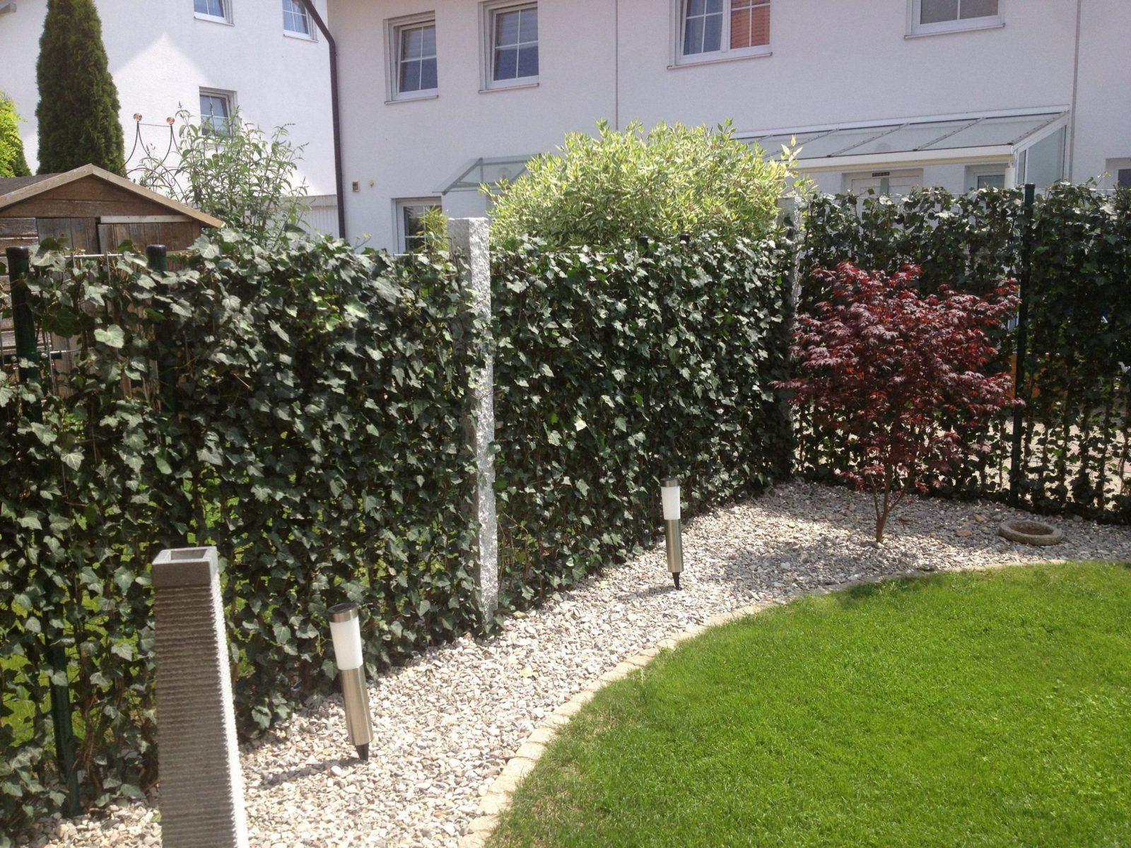 Baustelle Von Garten Bronder Hecke Am Laufenden Meter®  Mobilane von Hecke Am Laufenden Meter Günstig Bild