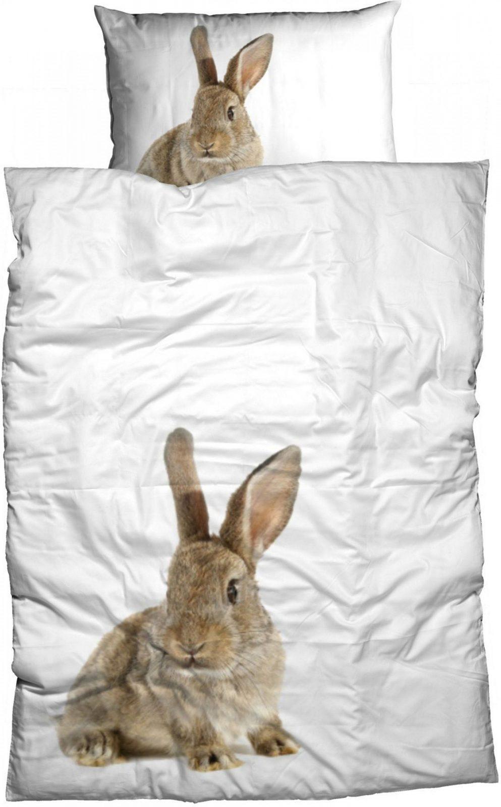 Bettwäsche Casatex Hase Großes Tiermotiv Bestellen  Baur von Bettwäsche Mit Tiermotiv Photo