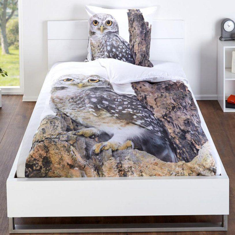 Bettwasche Linon Bettwäsche Eule 135X200 Dänisches Bettenlager von Eulen Bettwäsche Dänisches Bettenlager Photo