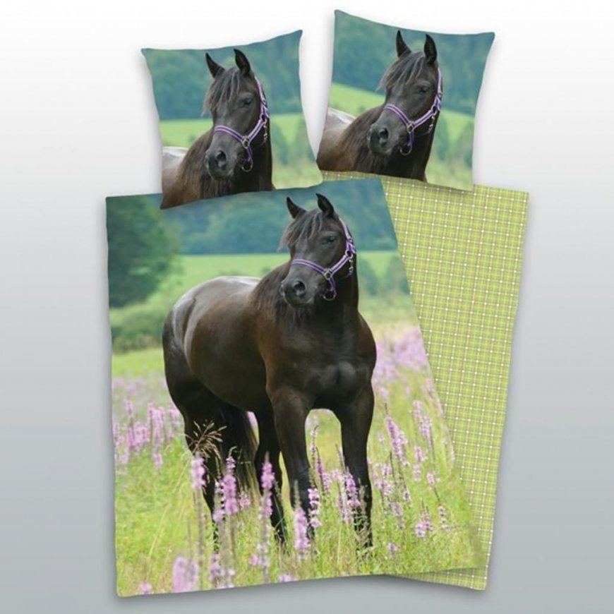 Bettwäsche Pferd Fotodruck 135X200 Cm 80X80 Cm  Real von Bettwäsche Pferde Fotodruck Photo