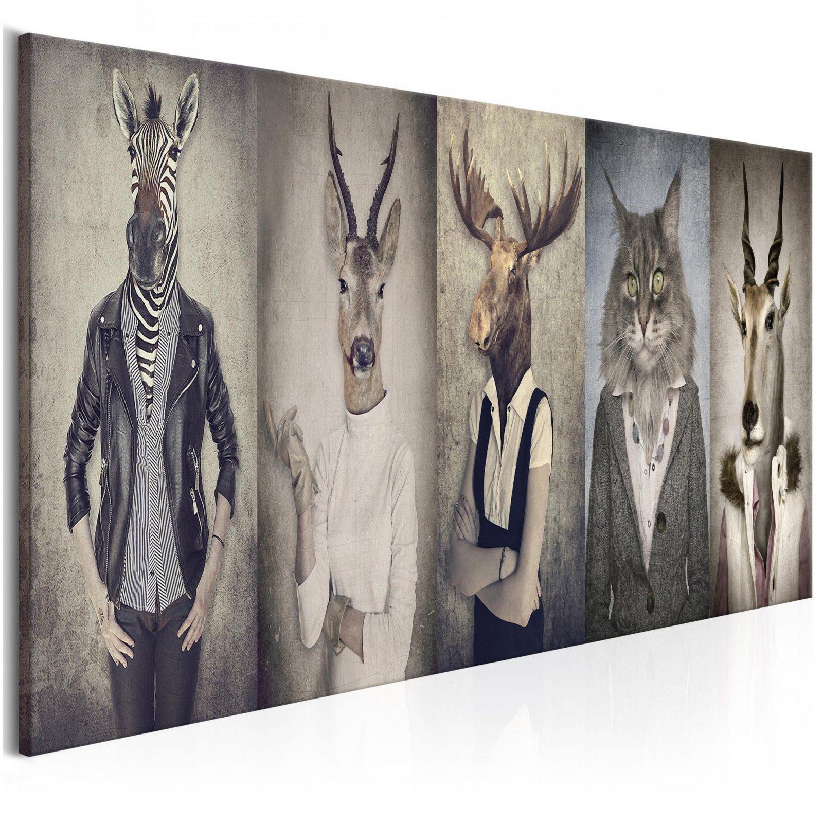 Bilder Leinwand Bild Tiere Katze Retro Vintage Menschen Zebras von Zebra Bilder Auf Leinwand Bild