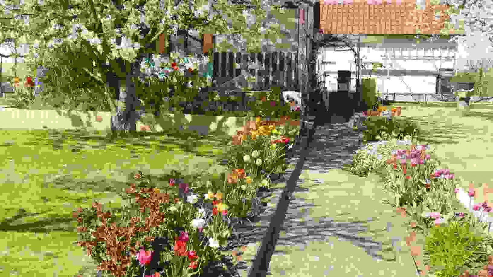 Ein Schöner Garten Im Frühjahr 2013 Ist Das Beste Von Ideen Von Mein von Gartenfotos Mein Schöner Garten Photo
