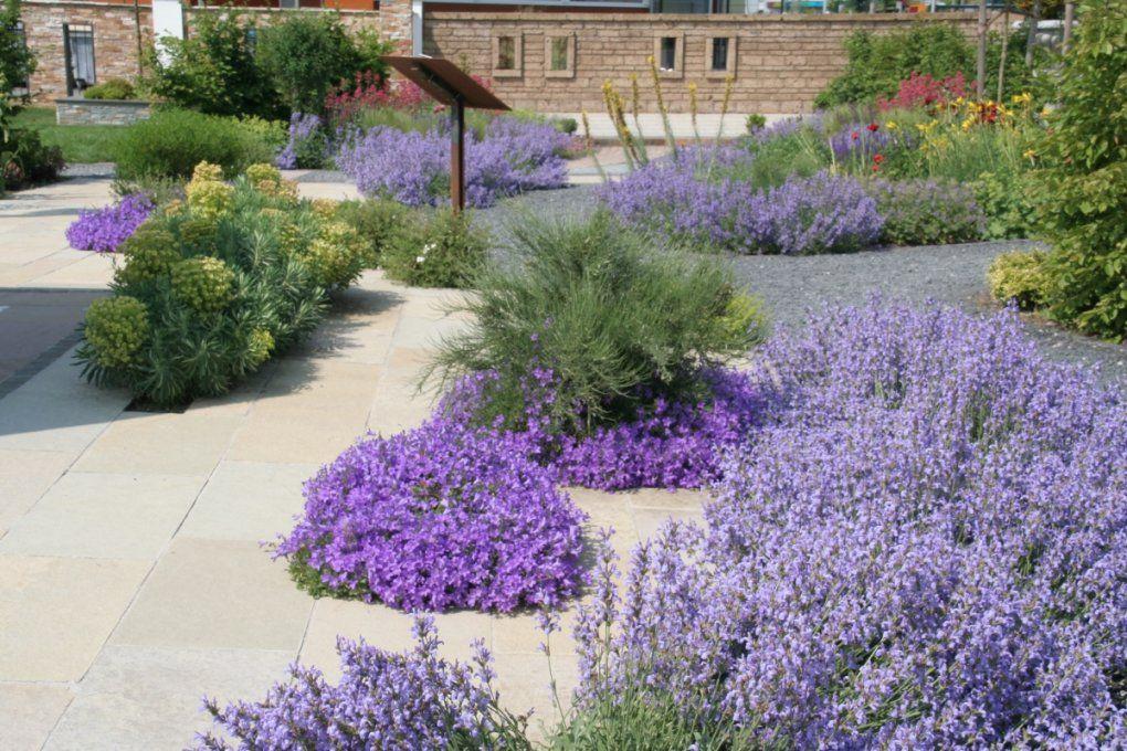 Englischer Garten  Cantera Naturstein Welten von Mediterraner Garten Mit Kies Bild