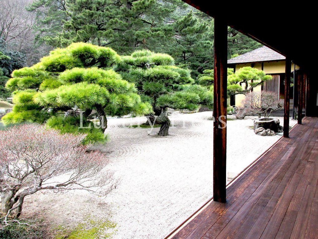 Exklusive Gartengestaltung Für Moderne Gärten & Parks von Gartengestaltung Mit Steinen Bilder Photo