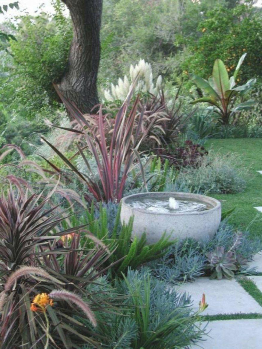 Faszinierend Exotische Pflanzen Für Den Garten Spannende Exotische von Winterharte Exotische Pflanzen Für Den Garten Bild