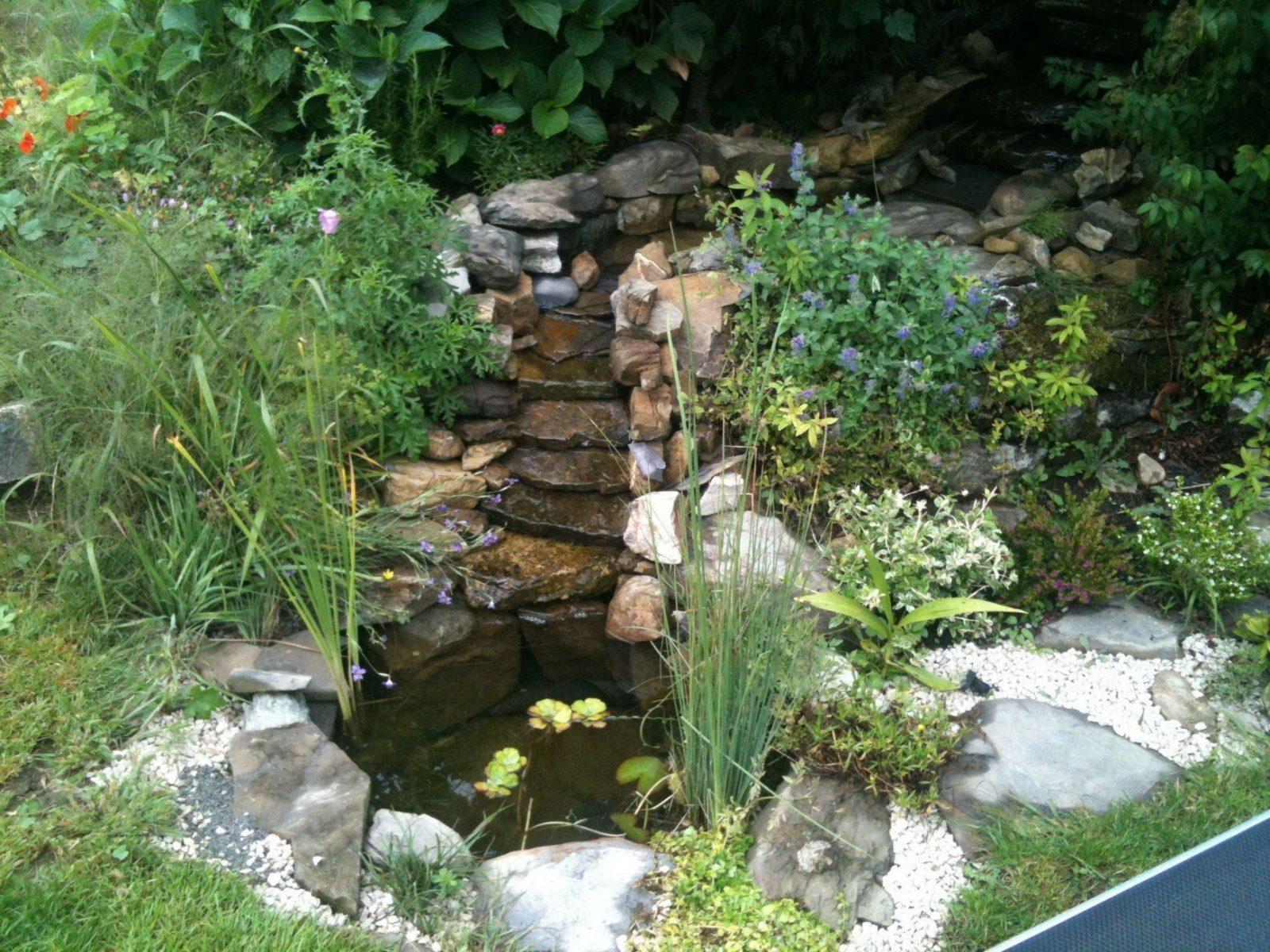 Faszinierend Kleiner Bachlauf Garten Kleiner Wasserlauf Im Garten von Kleiner Wasserlauf Im Garten Photo