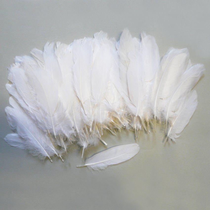 Federn Weiß 15 Cm 15G  Weiße Bastelfedern von Federn Zum Basteln Kaufen Bild