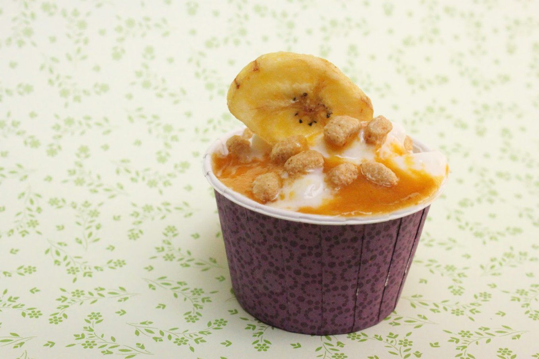 raffaelloeis selber machen so einfach geht 39 s von frozen joghurt selber machen ohne maschine. Black Bedroom Furniture Sets. Home Design Ideas