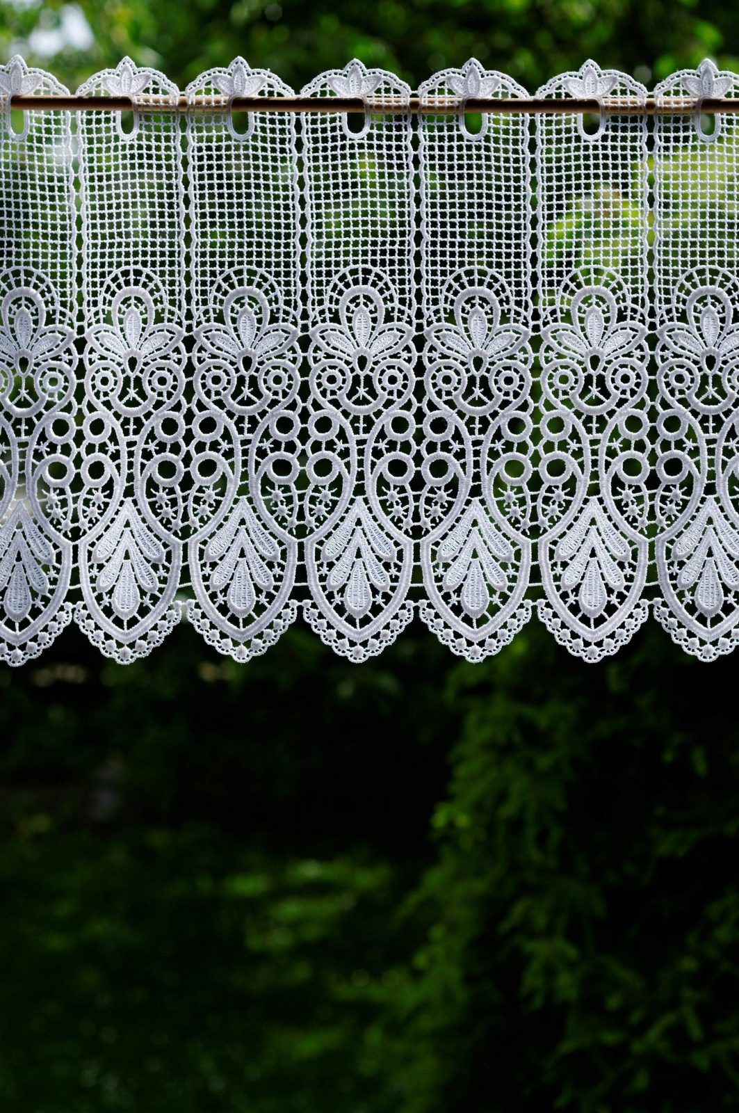 Gardine Design 68450  Jetzt Kaufen von Plauener Gardinen Werksverkauf Photo