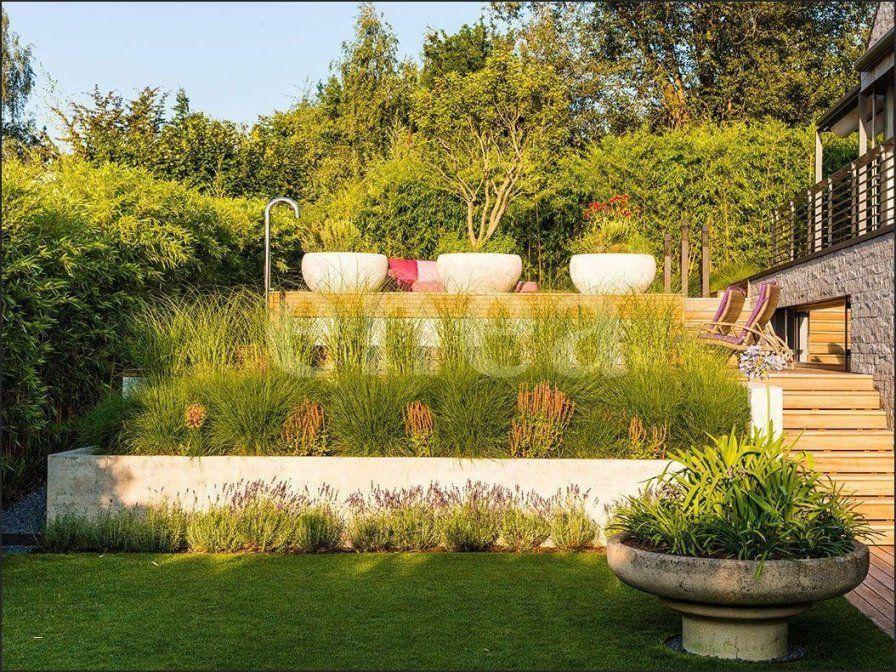 Garten Ideen Deko Best Of Mein Schöner Garten Sichtschutz Ideen von Mein Schöner Garten Deko Bild
